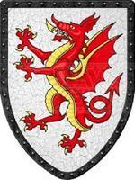 The Dragonfyre Dynasty